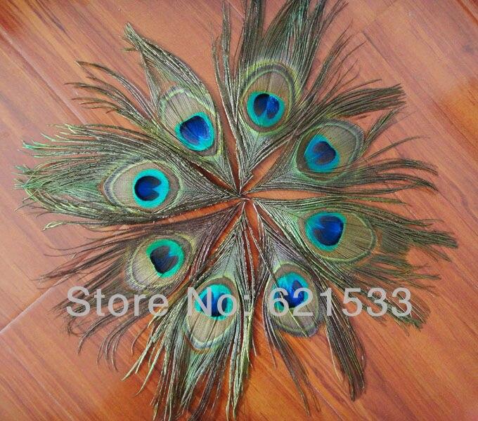 모조리! 500 개/몫 15 cm lenghth 자연 공작 눈 깃털 공작 깃털 눈 freeshipping-에서깃털부터 홈 & 가든 의  그룹 1