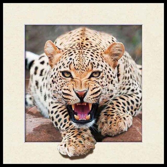 3D/5D impresión lenticular con marco negro leopardo antílopes gatos ...