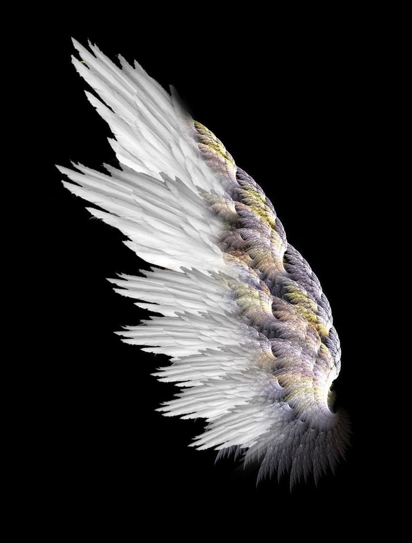 Украшение для дома/Модельное подиумное сценическое шоу/другие праздничные вечерние принадлежности большого размера 100% Высокое качество модное перо крыло Ангела