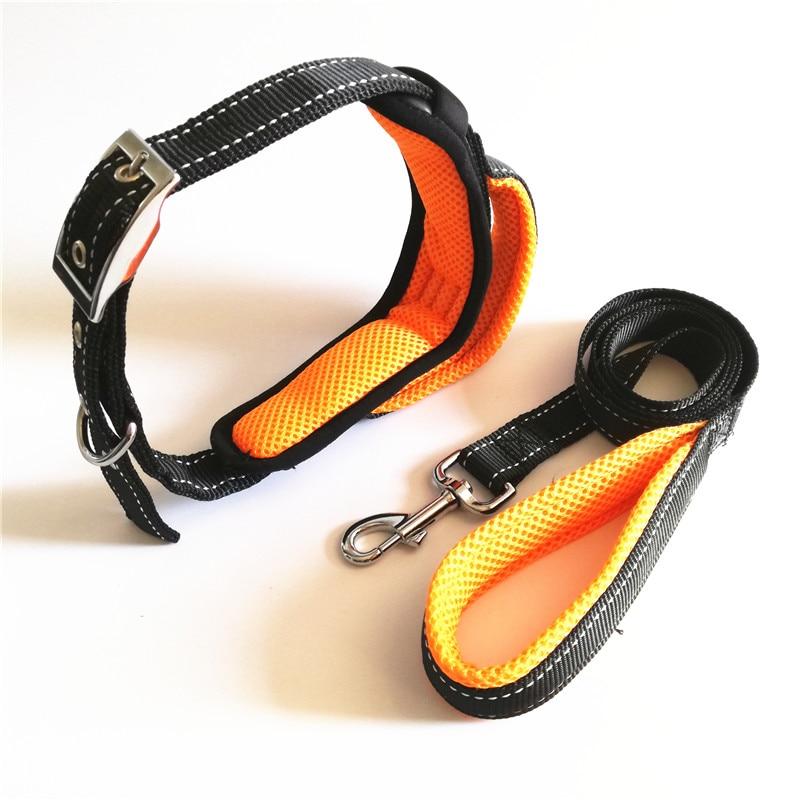 Dog Collar and Leash Set (15)
