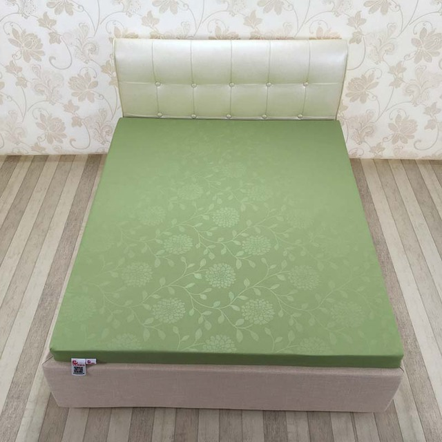 Chpermore 10cm Thickening Memory foam Mattress family Tatami high