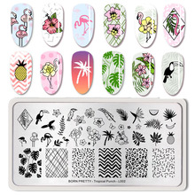 BORN PRETTY Summer Fruit Nail Art Stamping Template tropical Pattern Rectangle Image Plate Stamping Polish Needed