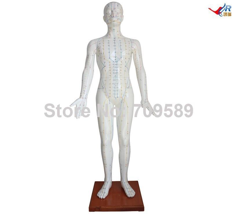 Acupuncture Model 178CM цены