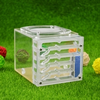 Ant Housing Nest Insect Cage Farms Feeding Moisture Plastic Display Square Box