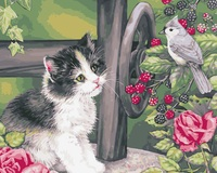 MaHuaf I147 Cat And Bird Animal DIY Coloring By Numbers Digital Oil Painting Hand Painted Painting