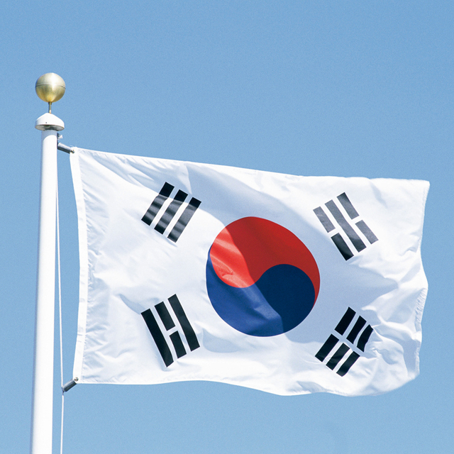 New 3x5 Feet Large South Korea Flag Polyester The Korean National Banner Home  Decor