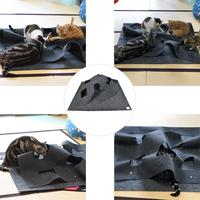 Cat Activity Play Mat with Holes Collapsible Pet Rug Training Scratching Bed