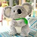 30 cm 40 cm grande Cinereus Koala muñeco de peluche regalo de cumpleaños para niños niñas bebés brinquedos Koala australiano lindo envío gratis