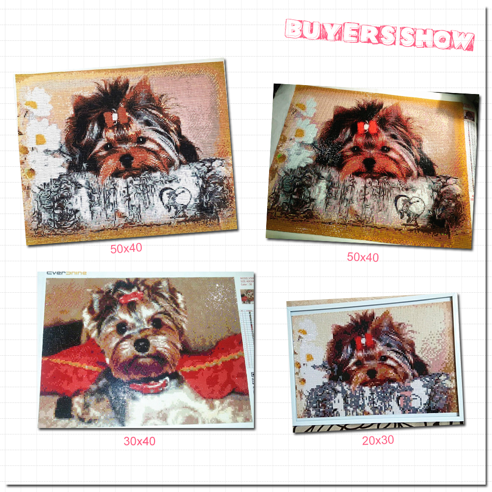 EverShine Diamond Embroidery Dog Diamond Mosaic Picture Rhinestones Diamond Painting Full Set Sale Yorkshire Terrier Beaded Art in Diamond Painting Cross Stitch from Home Garden