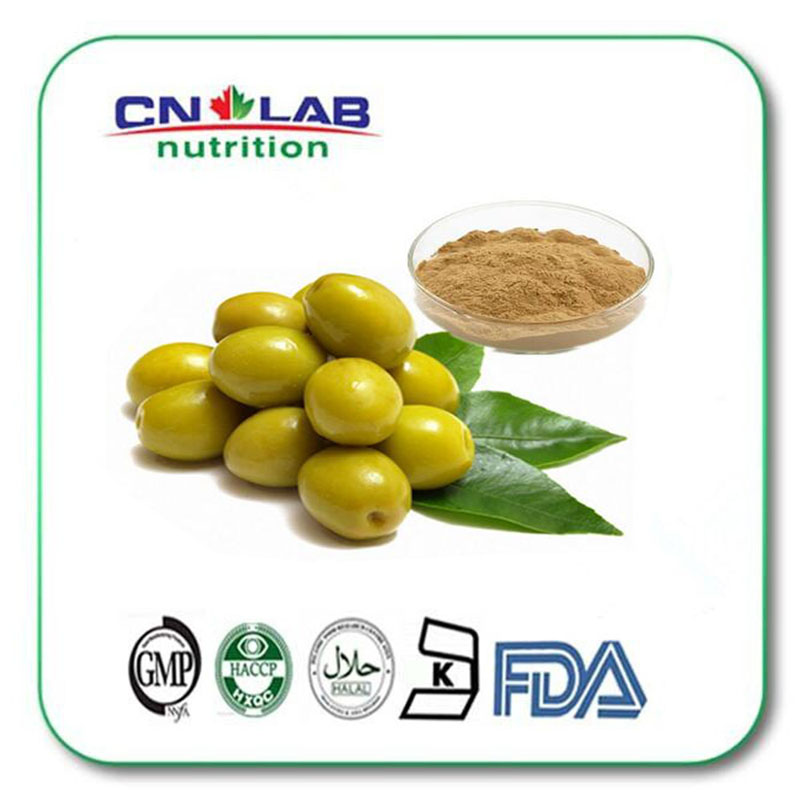 1000g Natural Super Anti Oxidant 20% Oleuropein, Olive Leaf Extract hot sale