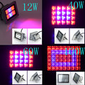 RAYWAY Free shipping High Power 12W - 100W Plant lamp grid Spotlights AC85~265V Red Blue LED Plants Panel Grow Lights RED+Blue