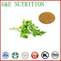 ISO Manufacturer Wholesale Parsley Extract Price 10:1, 500g
