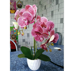 3D Real Touch Home Decor Flore Artificial Butterfly Orchid Flowers For Home Wedding DIY Decoration Fake Moth Flor Orchid Flower