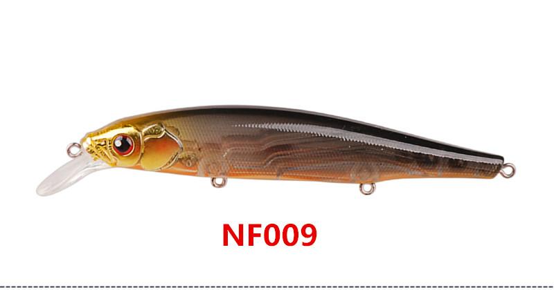 NF009_
