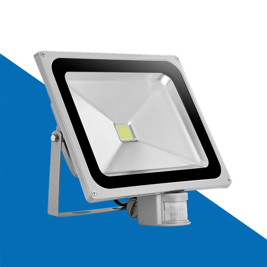 DIRDAY led flood light lamp 10W 50W PIR Motion detective Sensor 110-260V 20W 30W Outdoor floodlight outside lights with PIR free dhl fedex 85 265v 10w 20w 30w 50w 70w 100w pir led floodlight with motion detective sensor outdoor led flood light spot