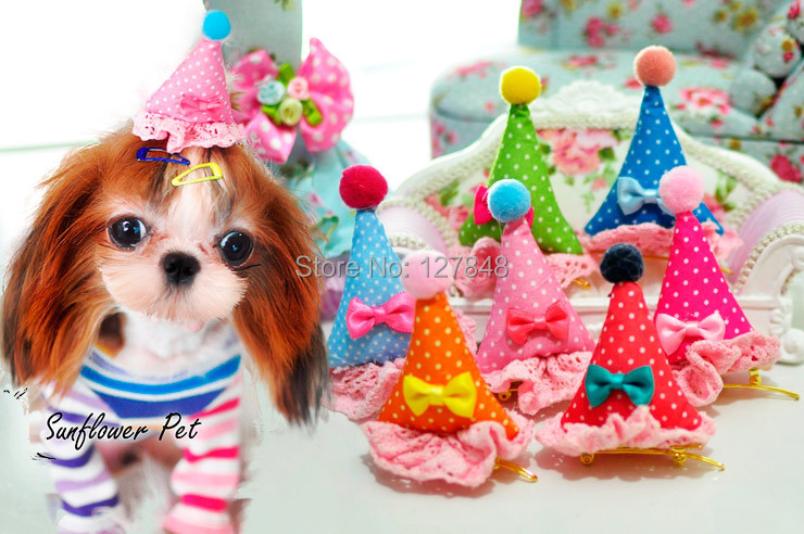 Pet Birthday And Holiday Lace Hat Hairclip Barrettespet Hairpin Bow 50pcs Lot In Cat Grooming From Home Garden On Aliexpress