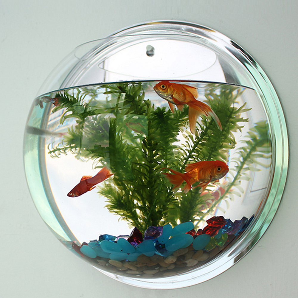 Petshy Fish Tank Wall Hanging Aquarium Round Acrylic Pot Plant Wall Mounted Bowl Aquarium Home Decoration Aquatic Pet Supplies