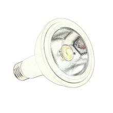 RAYWAY New Design Best Dimmable LED Lamp PAR30 12W Led Spotlight bulb E27 Led COB chip  cool white / Warm White lampada LED Bulb