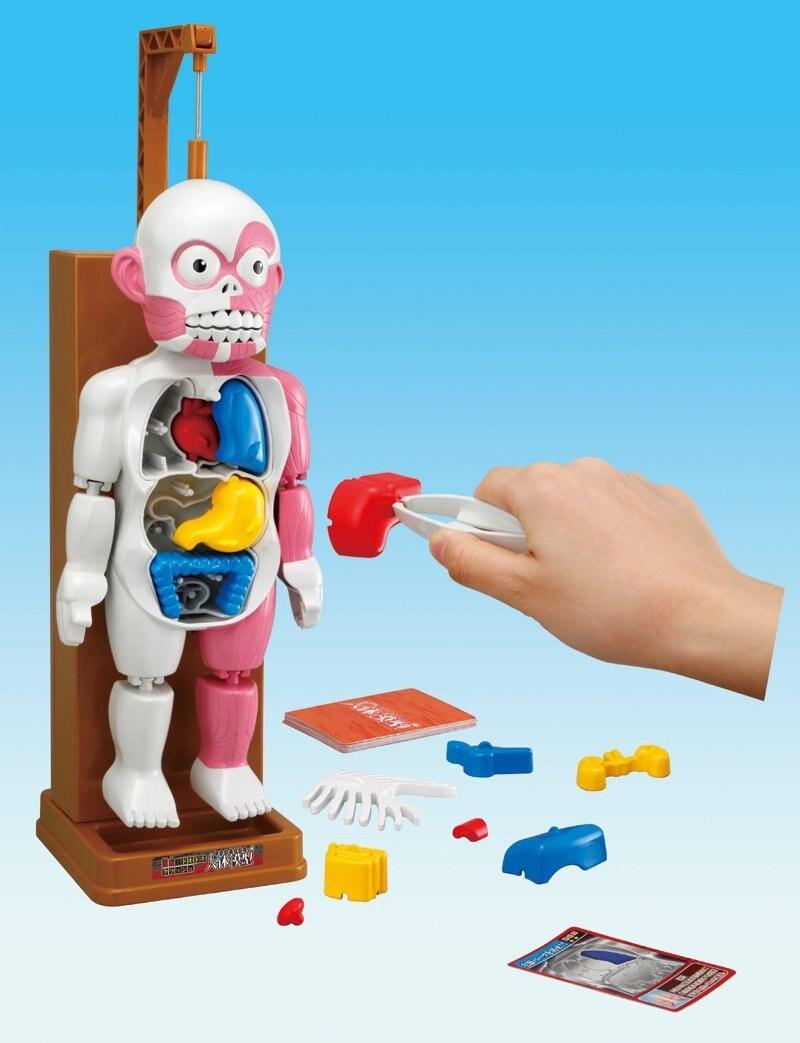 Купить с кэшбэком New Toys Trick Joke Gag Funny Novelty Toy  For Children Mounted Toy Model 3D puzzles Fun Games The Human Body Terrorist