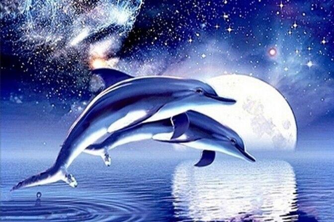 A1165 Үйді безендіру Мозаика 3DIY Дельфин - Өнер, қолөнер және тігін - фото 1