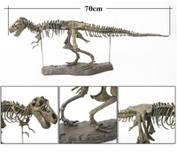 T-Rex skeleton model