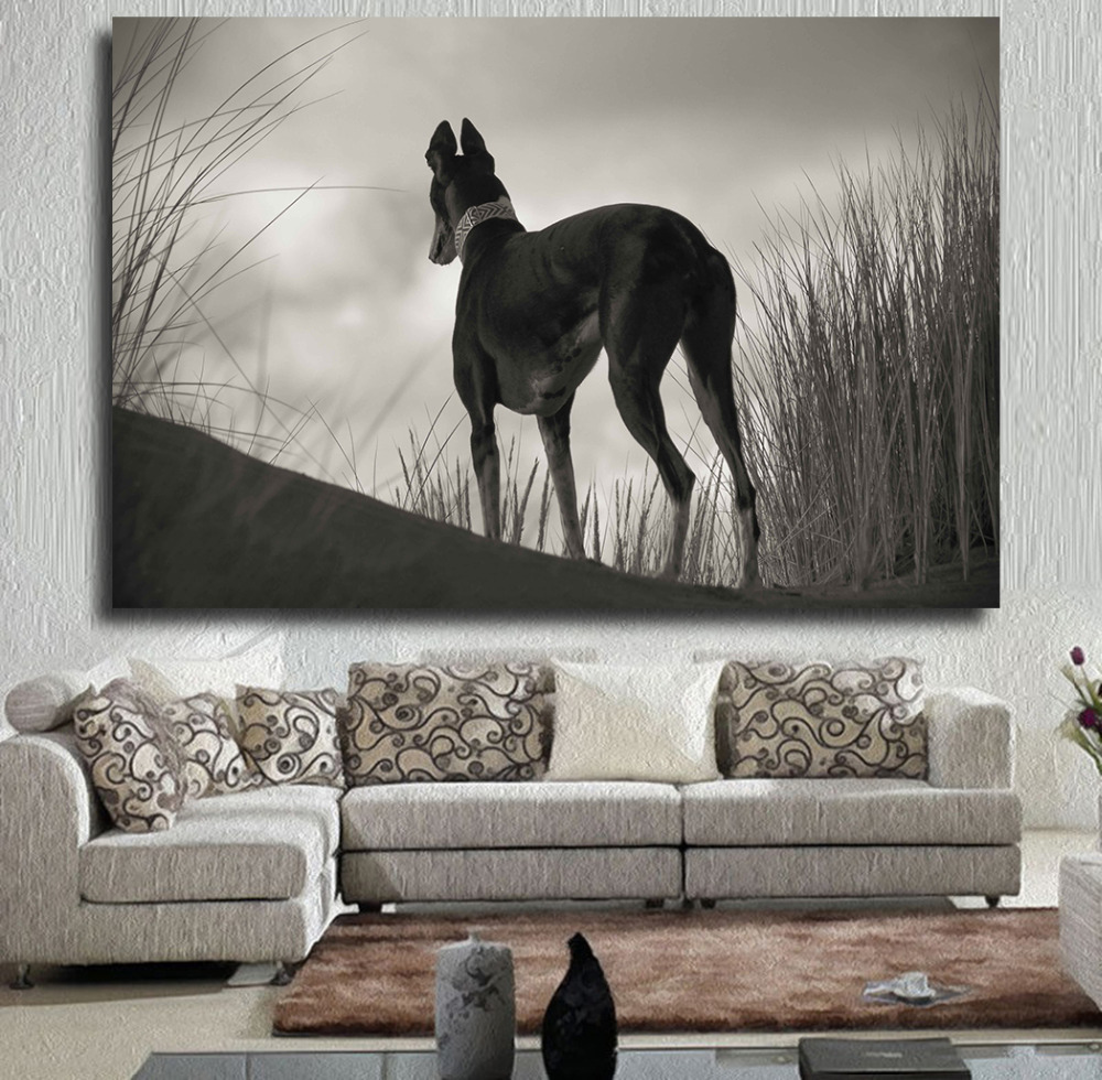 Embelish Black And White Greyhound Gazing Greyhounds CAN Sit Oil Painting On Canvas Wall Painting Picture For Living Room