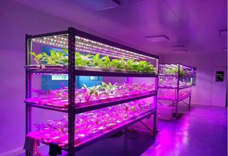 10pcs PACK, High Yield 90cm LED Grow Lights / T8 12Watt Standard / Supplement Growing Light