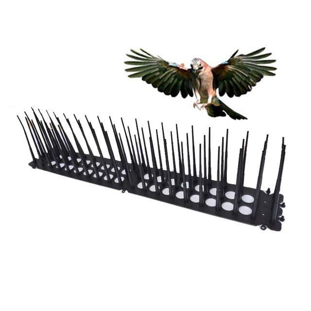 US $11 8  Aliexpress com : Buy Plastic Bird Spikes Cat Repellent for Anti  Pigeon Pest Control Spikes Anti Bird Anti Pigeon Spike Scare Seagull Away