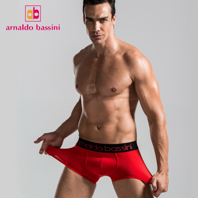 Mens Underwear Boxers Modal Arnaldo Bassini Brand Male Panties Pouch Sheath Sheer