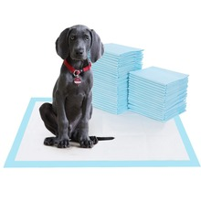 Pet Training and Puppy Pads Super Absorbent Diapers Deodorant Antibacterial Dog Cat Nappy Toilet 20/40/50/100Pcs