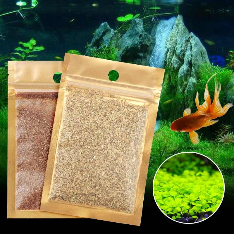 7 Kinds Aquarium Plants Seeds Waterweed Aquarium Water Grass Seed Easy Growing Fish Tank Plants Waterscape Fish Tank Decoration