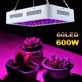 600 Вт двойной чип светодиодный растительный свет портативный полный спектр флуоресцентная лампа 85-265 в продвижение роста Светодиодная ламп...