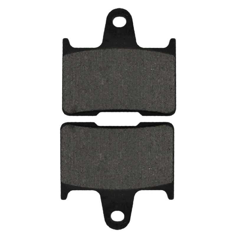 Motorcycle Brake Pads Rear Disks For KAWASAKI GTR 1400 GTR1400 2008-2011 Motorbike Parts FA254