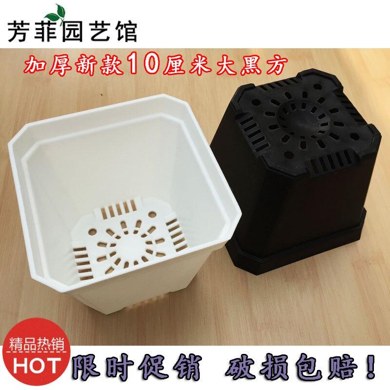 New succulents thick plastic pots 10 cm large black square
