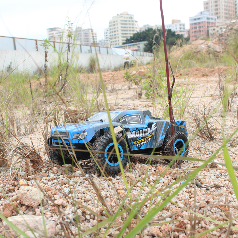 remote control cars IMG_4049