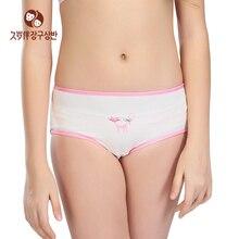 Female Underwear Shorts Girls