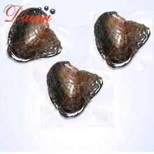 DMKB0033 6-9 мм натуральный жемчуг Пресноводный Культивированный рис бусины вакуумной упаковки устрицы жемчужная Устрица жемчужная Мидия