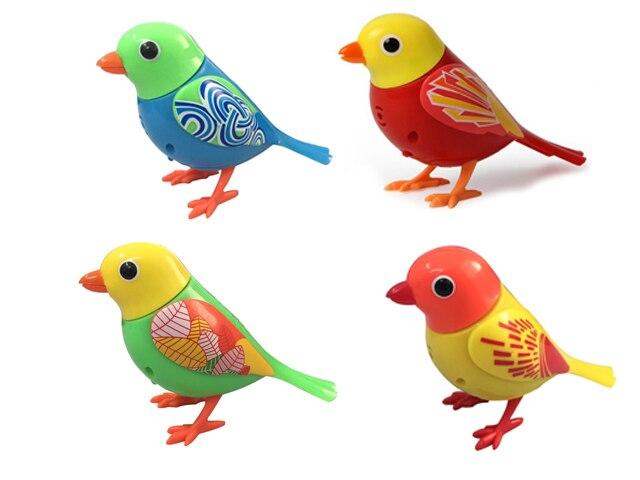 Singing birds haustiere singen solo oder in ein chor
