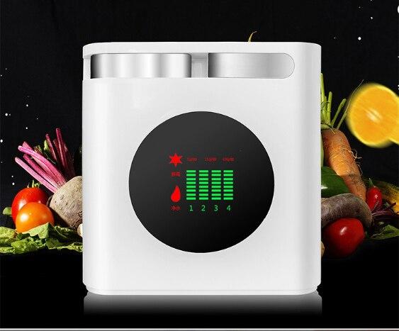 Machine multifonctionnelle de désinfection de fruits et légumes machine de purification machine de désinfection d'ozone