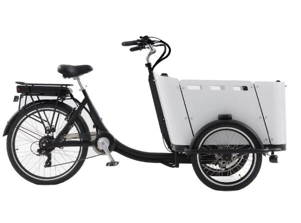 Chinese Three Wheel E Bakfiets Tricycle Electric Cargo Bike Frame In Bicycle With Rain Cover For Sale