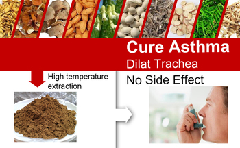 TCM Extraction Powder to Cure Asthma, Nourish Lungs and Bronchus, Decrease Allergic Reaction of Respiratory System