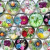 ZEROUP 12mm round photo glass cabochon mixed pattern fit cameo base setting for jewelry flatback 50pcs/lot TP-132