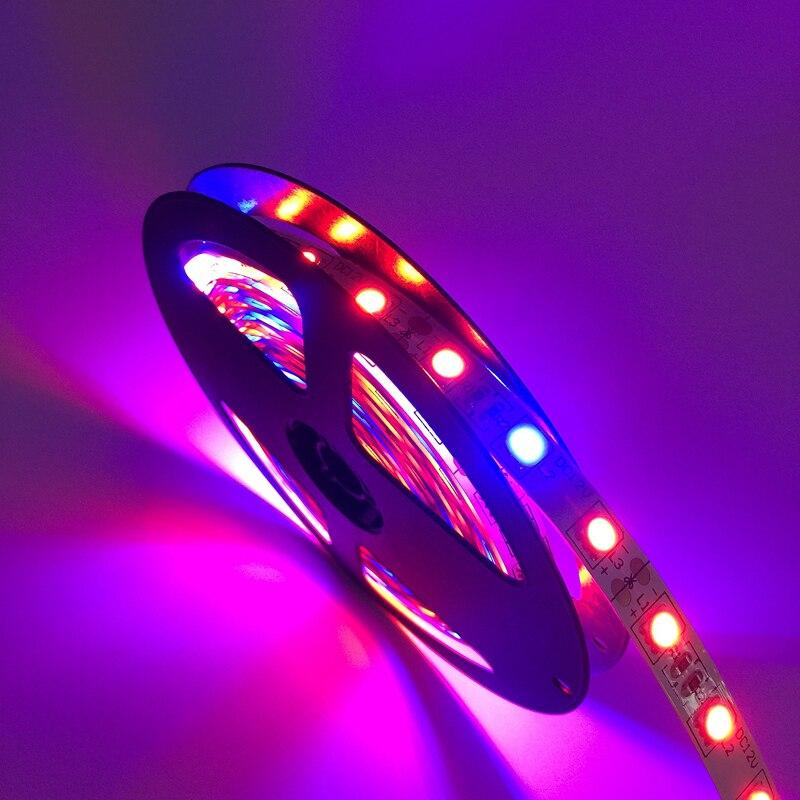 Levou Crescer Luzes 5050 levou crescer luz de Certificado : Ce, ccc, rohs