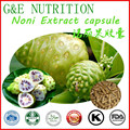 100% Natural Fresh Hot Selling Noni Extract capsule with free shipping 500mg*500pcs