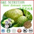 100% cápsula de Extrato De Noni Natural Fresco Venda Quente com frete grátis para 500 mg * 500 pcs