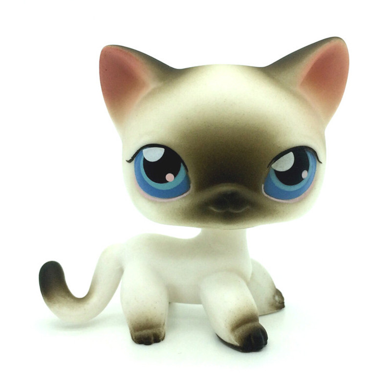 Pet shop 5 Rare Black White Short Hair Siamese Cat Blue Eyes lovely pet collection lps figure toy black yellow short hair siamese cat blue eyes nice gift kids