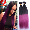 "Purple Ombre Clip In Human Hair Extensions Brazilian Silky Straight Two Tone Color Clip In Hair 10""-28"" in Stock Free Shipping"