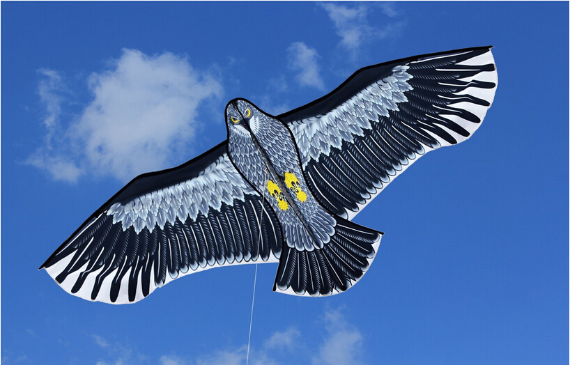 New-Toys-18m-Power-Brand-Huge-Eagle-Kite-With-String-And-Handle-Novelty-Toy-Kites-Eagles-Large-Flying-For-Gift-5