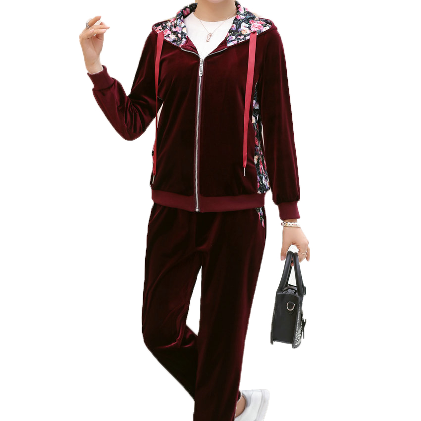 WAEOLSA Woman Casual Tracksuit Women Hooded Jacket And Trouser 2 Piece Suit Pleuche Set Lady 2PCS Pant Set Velvet Ensemble Femme in Women 39 s Sets from Women 39 s Clothing