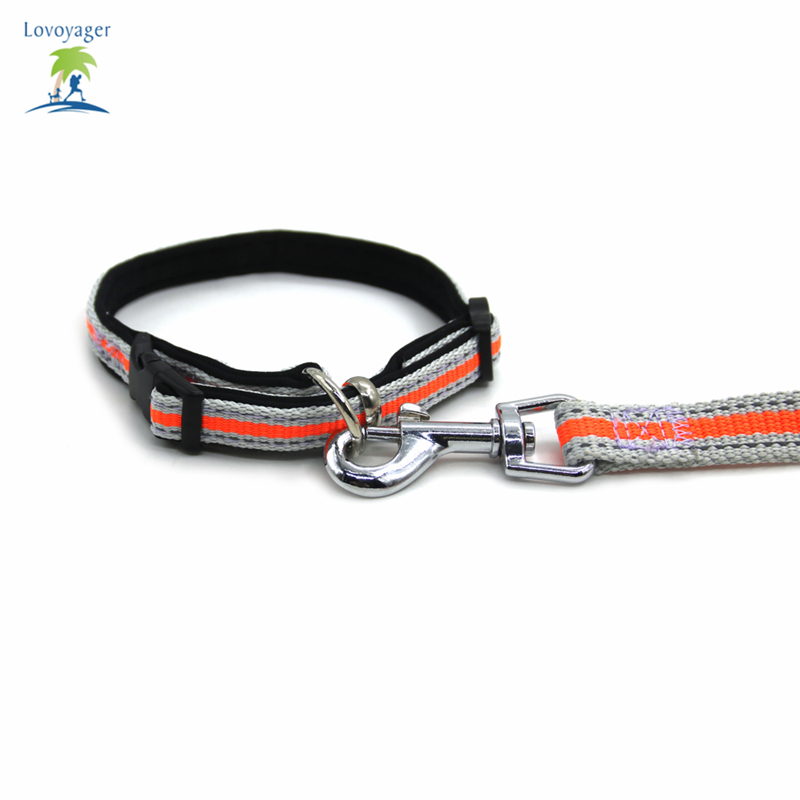 Reflective Fluorescent Pet Dog Adjustable Collar Leash Soft Elastic Leashes For Running Jogging Walking